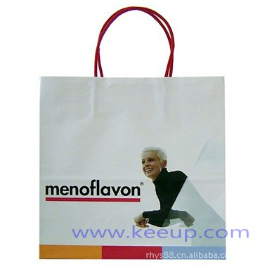 customized-paper-bags-with-printing-logo-2093