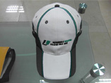Promotion Gifts Baseball Cap