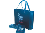 Eco Friendly Reusable & Foldable Handy Tote PP
