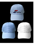 Embroidery Custom logo baseball cap and hat