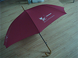 Personalized umbrella with your branded logo on