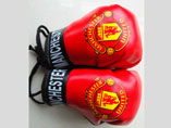 Promotional Boxing glove keychains