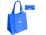 Purse Folding Shopping Bag