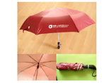 Customized Auto Umbrella