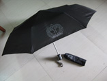 Promotional Folding Auto Umbrella