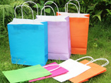 Custom Colourful Paper Bags