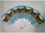 Personalized Advertising Fan