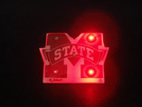 Flashing Light Badges
