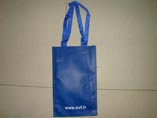 PP Non Woven Bag For Promotion