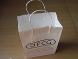 Custom Paper Bags With Logo Print